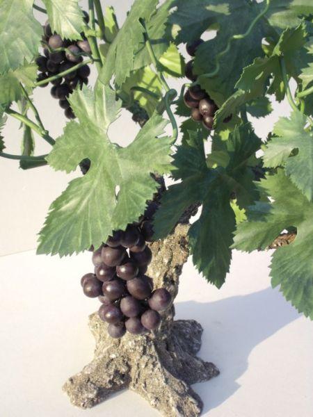 L 39 olivier forg pied de vigne - Pied de vigne en pot ...