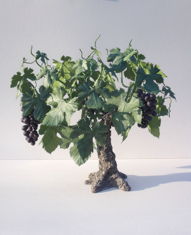L 39 olivier forg pied de vigne - Acheter pied de vigne ...