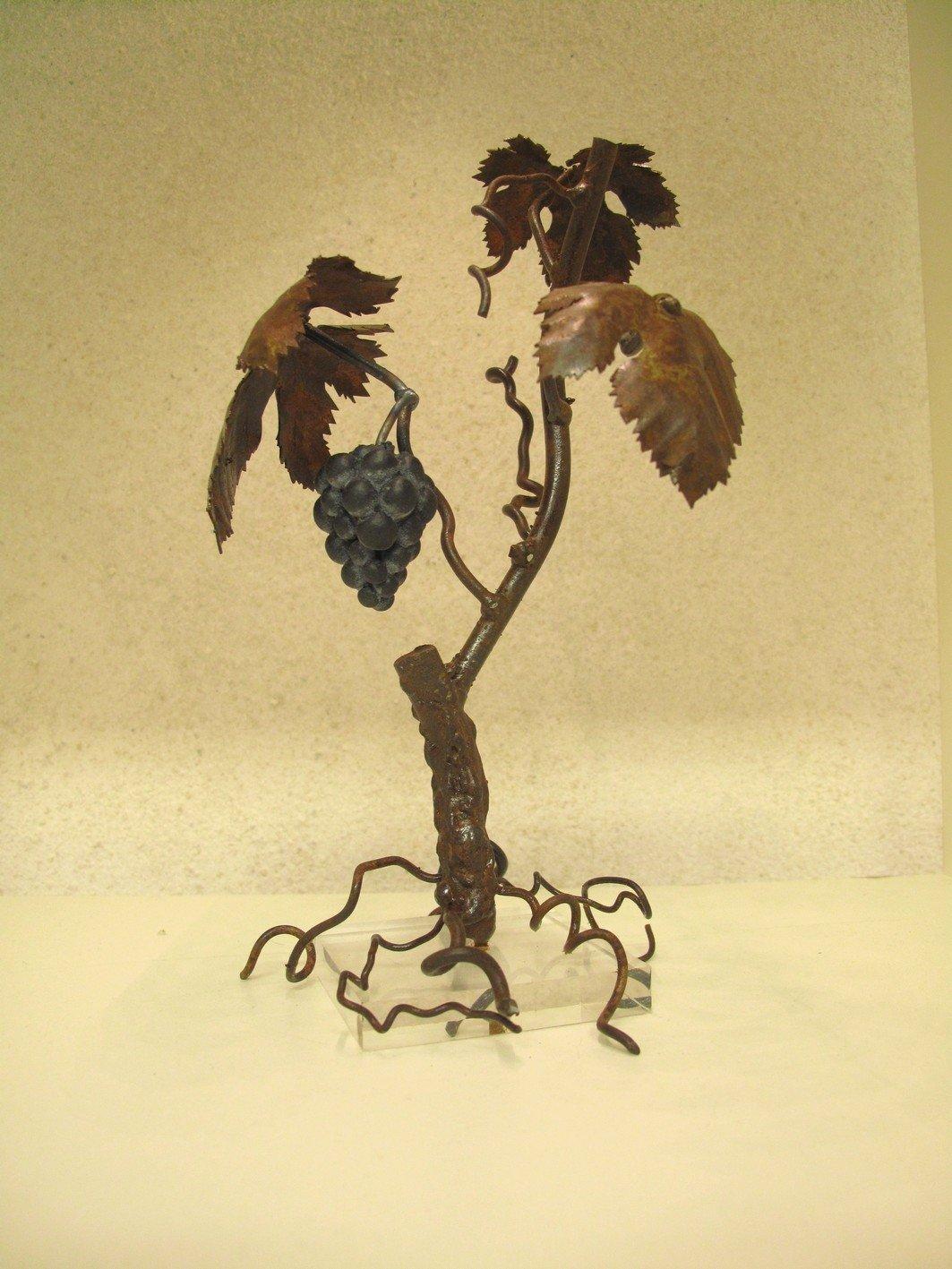 L 39 olivier forg petit pied de vigne - Acheter pied de vigne ...
